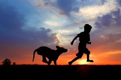 Boy and dog at sunset