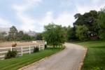 Luxury Equestrian Estates