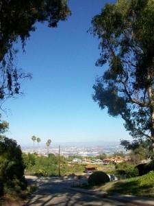 Miraleste Library - Palos Verdes Drive East - Facing East