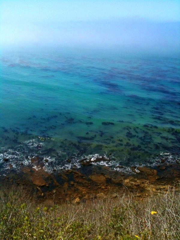 Palos Verdes Walk by the Ocean - Aqua Ocean