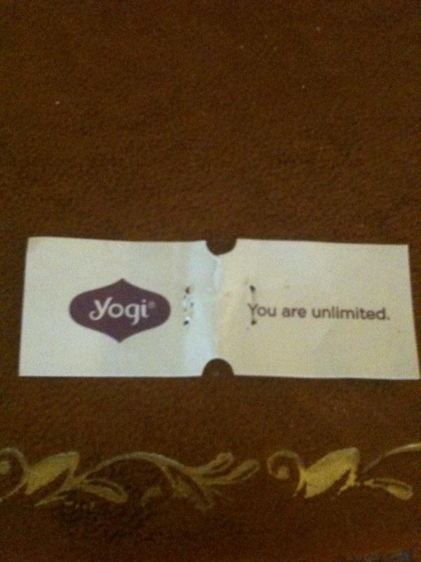 Yogi Unlimited