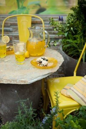 Lemonade and Scones, outdoor picnic