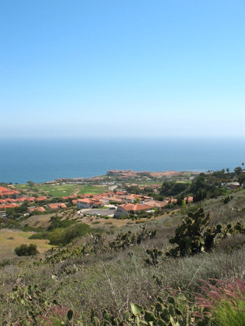 View from Scenic Lookout in Palos Verdes with Terranea Resort in Background