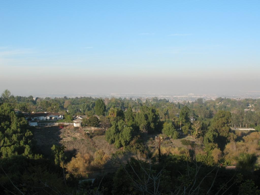 Palos  Verdes Canyon Views