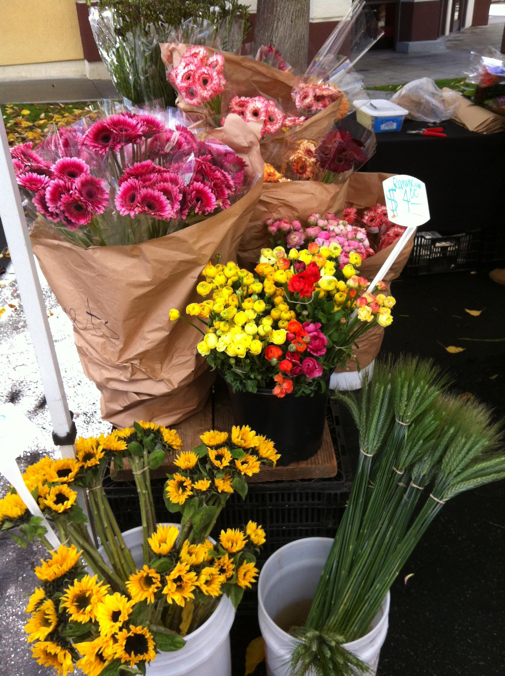 Palos Verdes Farmers Market Flowers