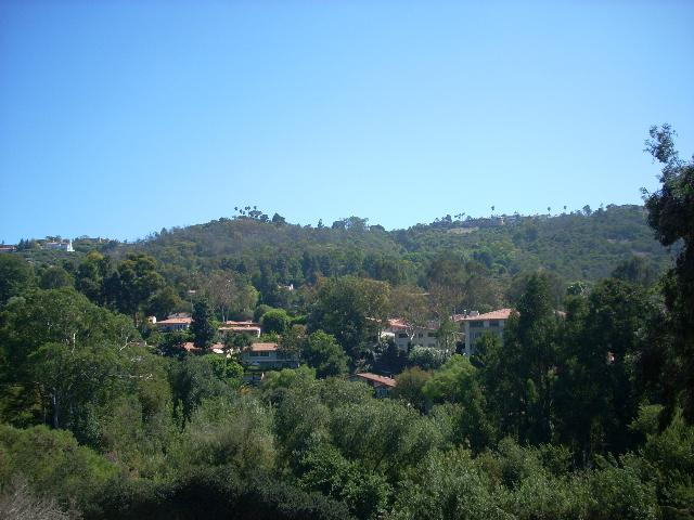 Wooded View on Via Anita