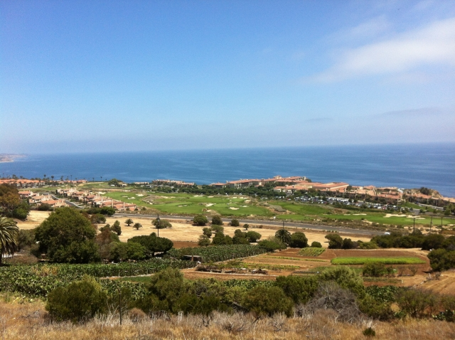View of the PV coastline and Terranea