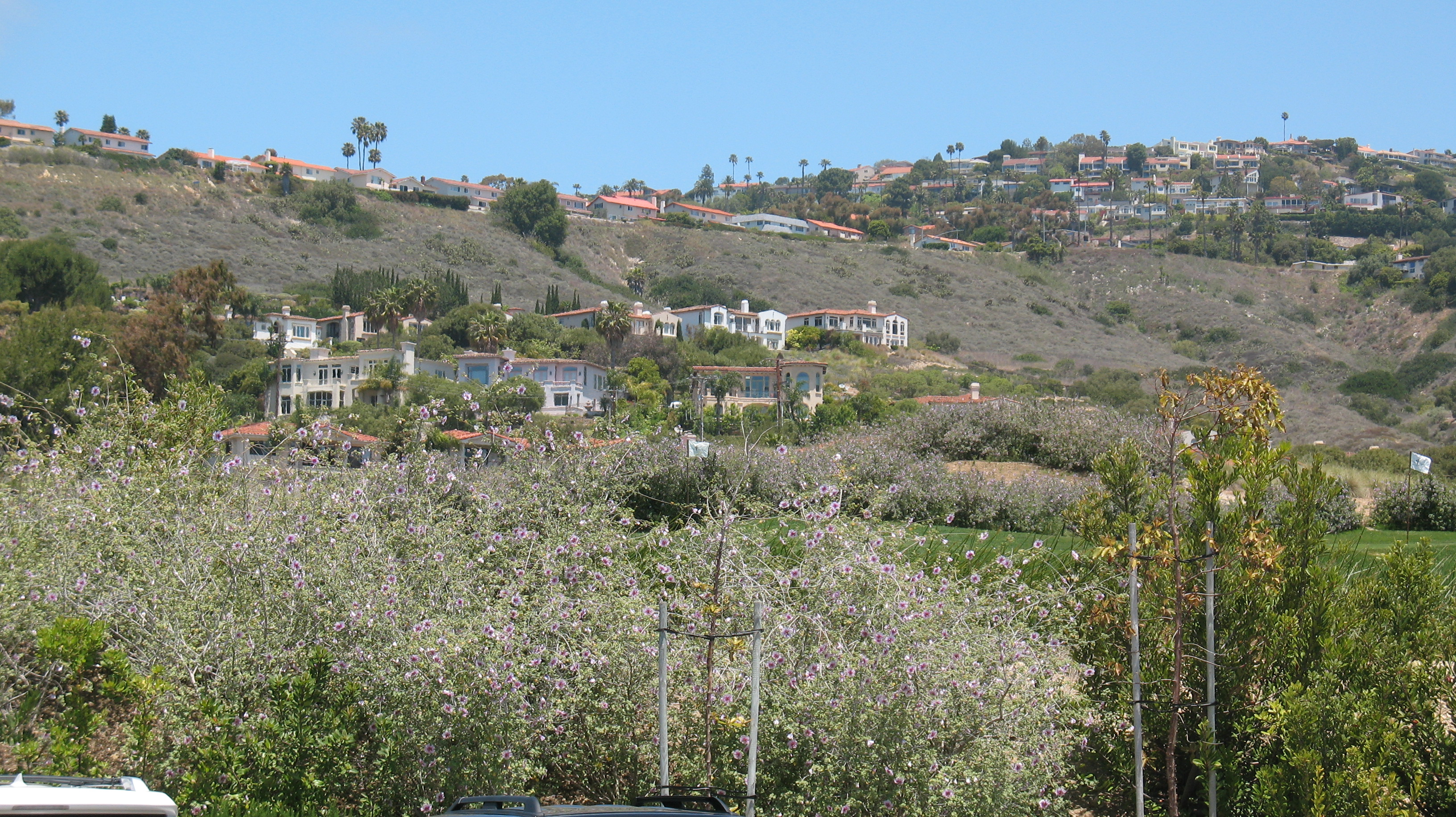 Luxury Homes in Palos Verdes