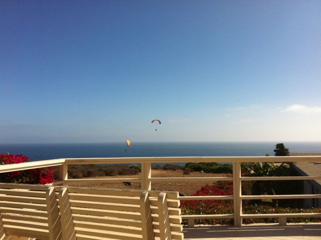 Sea Horse Paragliders