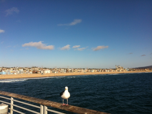 Hermosa Pier and Strand