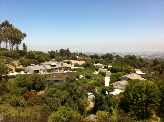 Homes along Palos Verdes Drive East in RPV