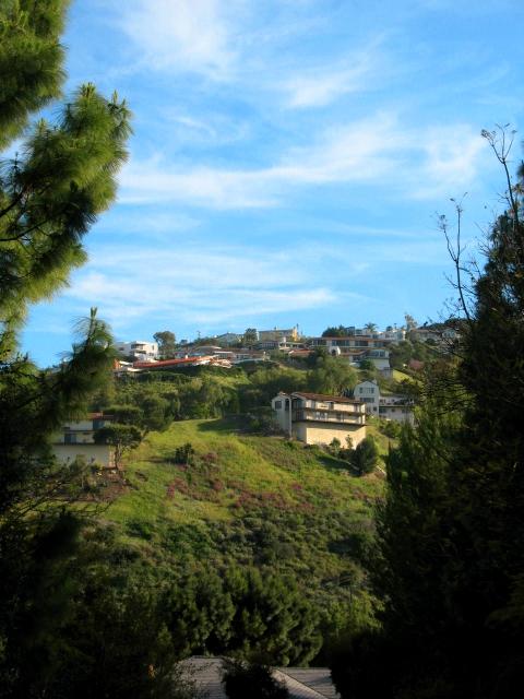 167 Miraleste Hills Homes