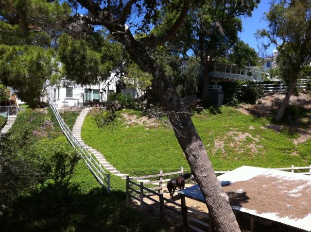 Rolling Hills Estates Horse Property