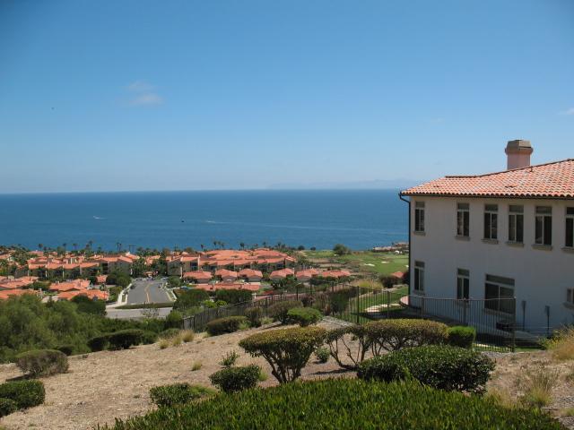 Palos Verdes luxury homes above Terranea