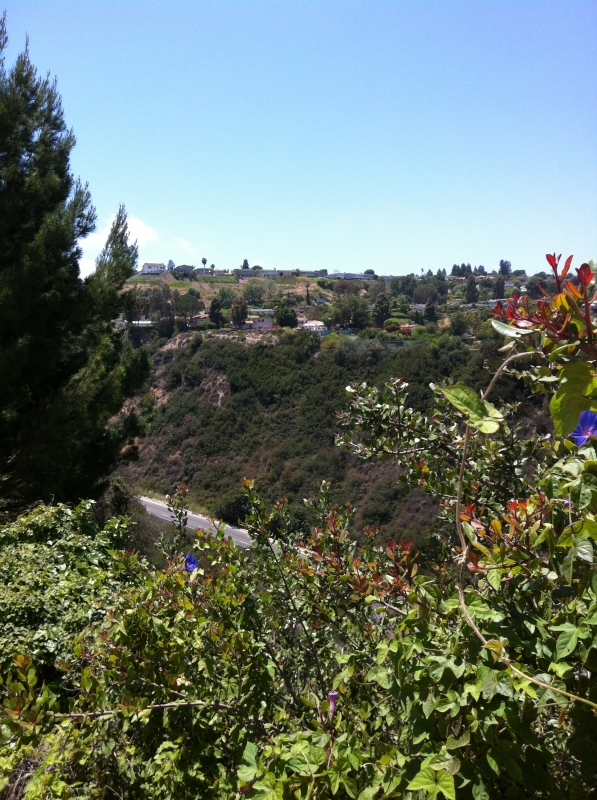 Hilltop homes in the Peninsula Center area of Palos Verdes