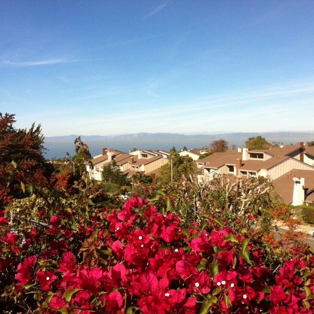 Overlooking the Crest neighborhood of Palos Verdes CA.