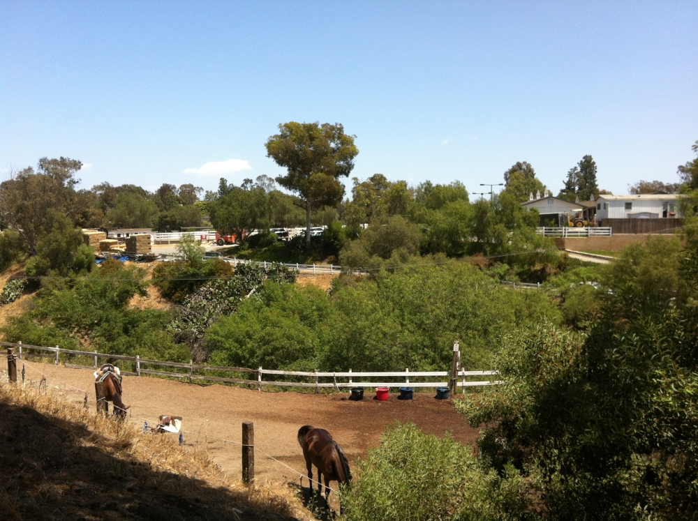 The Palos Verdes Estates Stables in the Valmonte neighborhood