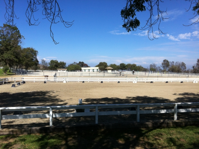 E Howlett Park - Riding area