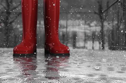 blog rain boots photo