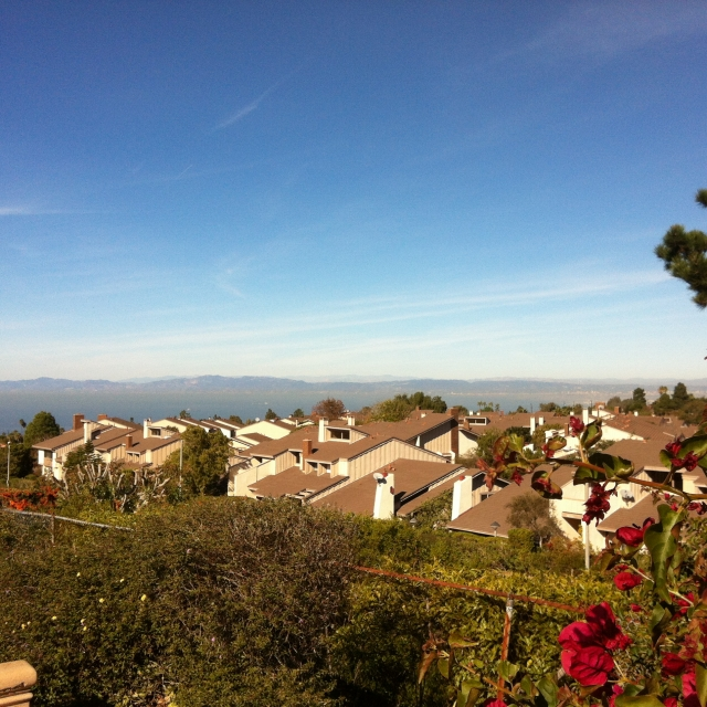 View from the Crest neighborhood in Palos Verdes