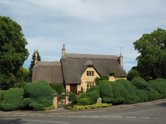 Picture Perfect Thatched Roof