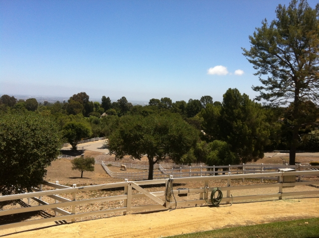 Horse Property in Rolling Hills CA