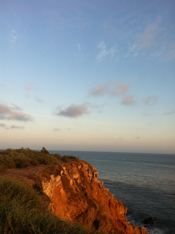 Coastal Palos Verdes
