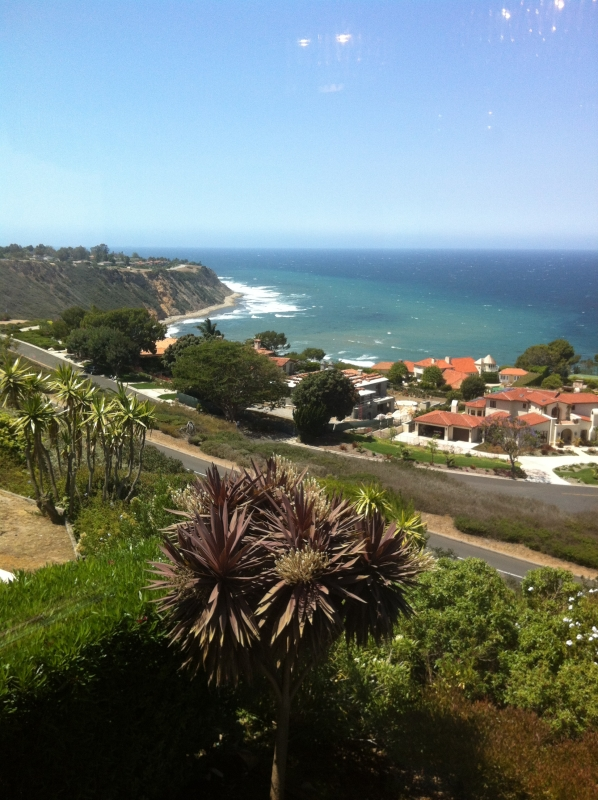 View from Lower Malaga Cove in PVE