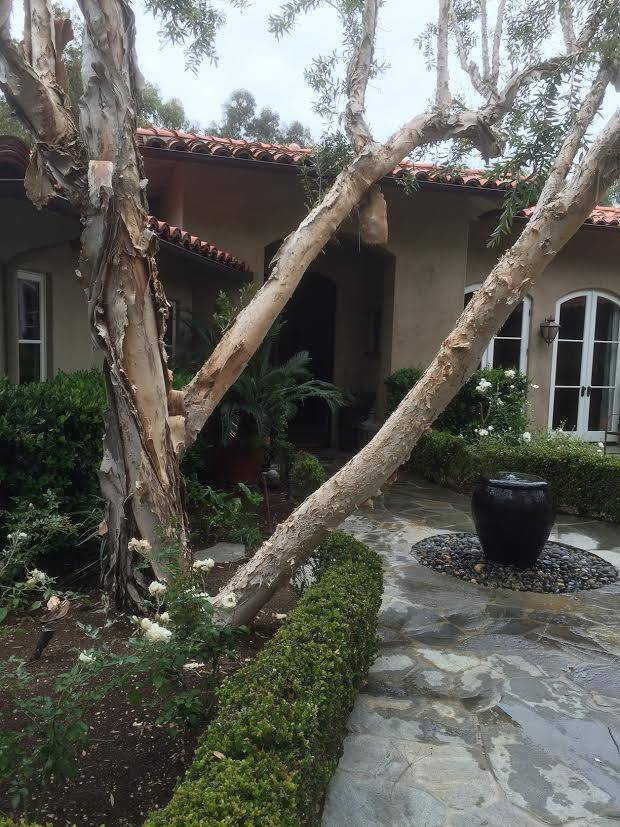 Malaga Cove Luxury Home