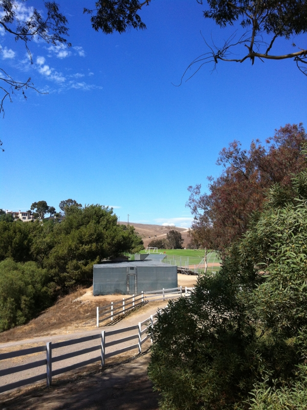 Open fields and riding trails in Rolling Hills Estates