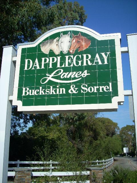 Dapplegray lanes buckskin sorrel sign (4)