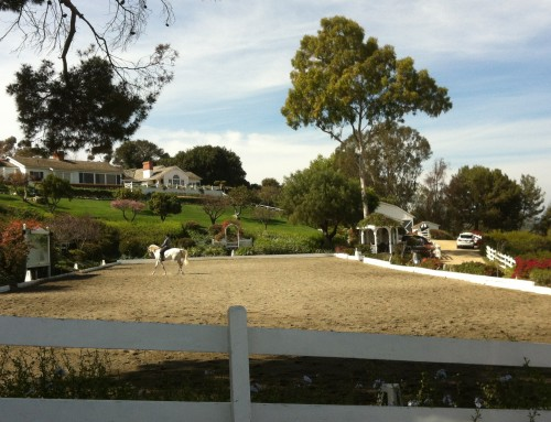 Where Is the Best Palos Verdes Horse Property?