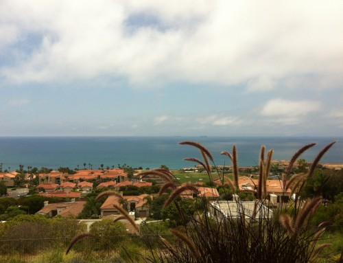 Palos Verdes Homes Market Snapshot August 2019