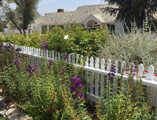 Rolling Hills Real Estate Snapshot August 2019