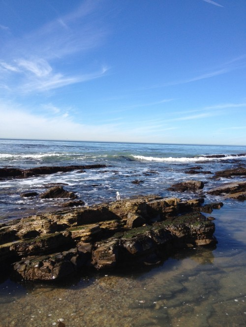169-Rocky-Ocean-Shot