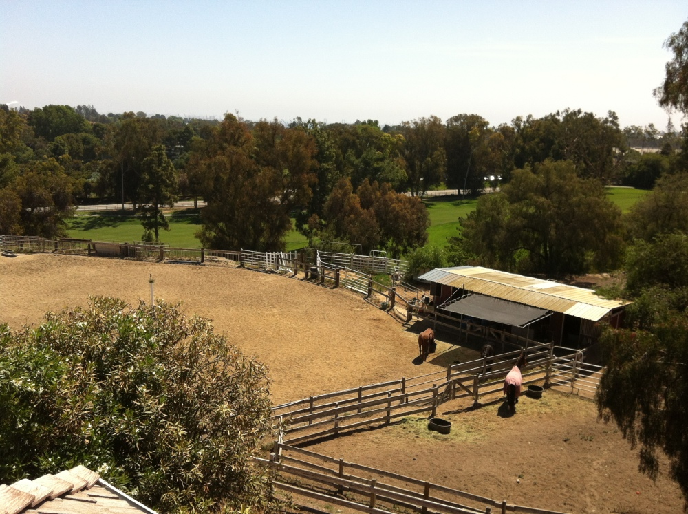 Horse propery in Rolling Hills Estates CA